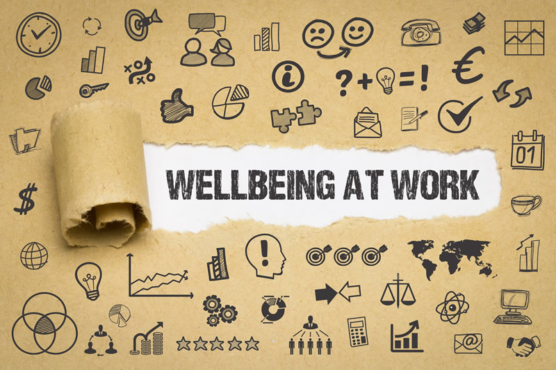 Develop a Workplace Wellness Plan